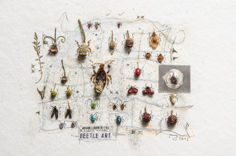 InsectArt