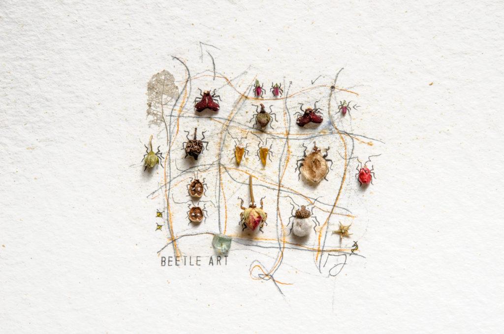 InsektenArt